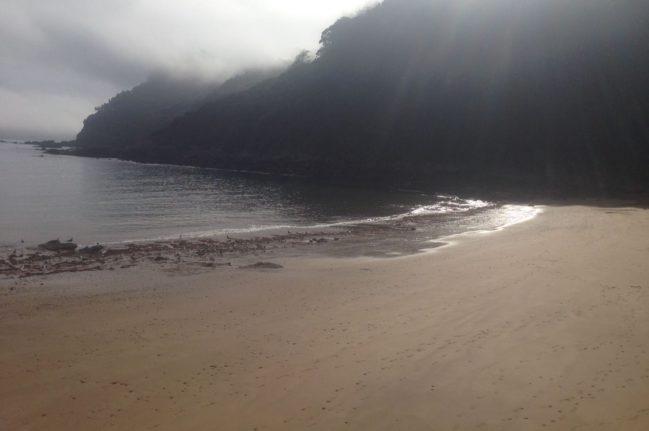 playa-de-tazones-playas-de-asturias-playea-2