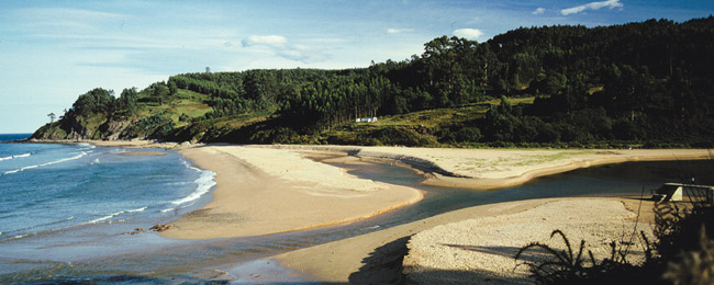 Playa de la Griega Colunga