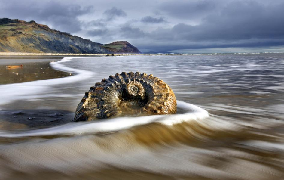 lyme-regis-the-jurassic-coast-england-playea