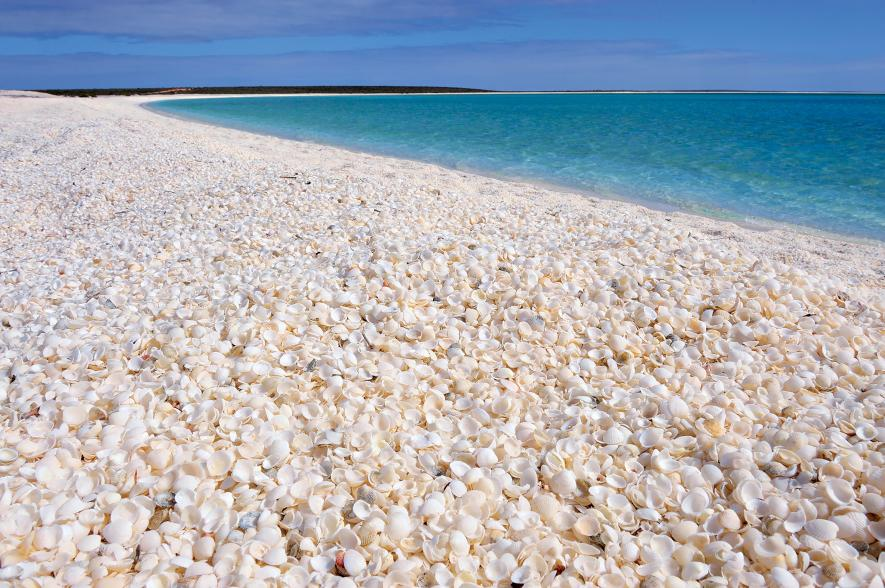 shell-beach-shark-bay-western-australia-playea